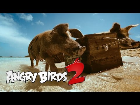 Angry Birds 2: Angry Is Back - Teaser 2